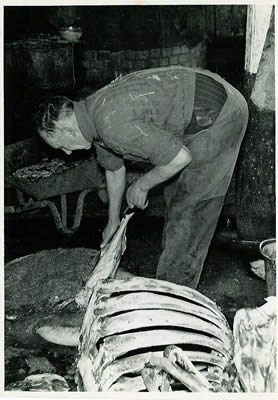 Knackerman trimming fat from a tripe - 1960s